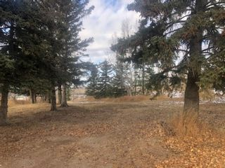 Photo 4: 16022 402 Avenue E: Rural Foothills County Land for sale : MLS®# A1051546