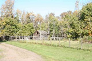 Photo 5: RR 220 And HWY 18: Rural Thorhild County House for sale : MLS®# E4227750