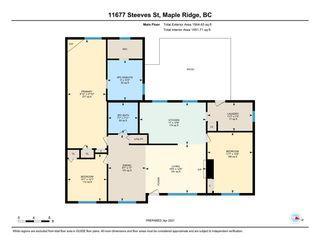 Photo 24: 11677 STEEVES Street in Maple Ridge: Southwest Maple Ridge House for sale : MLS®# R2569720