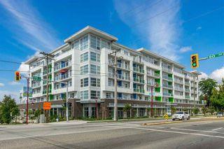 Photo 1:  in Delta: Annieville Condo for sale (N. Delta)  : MLS®# R2556116