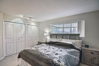 Photo 30: 117 Hawkford Court NW in Calgary: Hawkwood Detached for sale : MLS®# A1103676