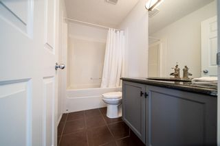 Photo 26: 78 Bridlewood Drive SW in Calgary: Bridlewood Detached for sale : MLS®# A1087974