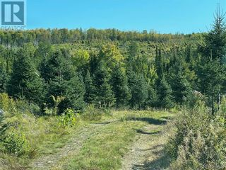 Photo 44: - Saint David Ridge in St. Stephen: Vacant Land for sale : MLS®# NB063465