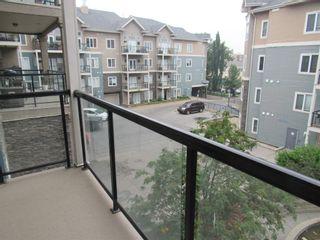 Photo 29: 329 10121 80 Avenue in Edmonton: Zone 17 Condo for sale : MLS®# E4255025
