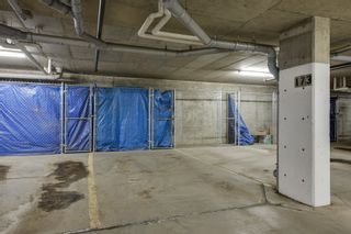 Photo 34: 320 1004 Rosenthal Boulevard: Edmonton Condo for sale : MLS®# E4141285