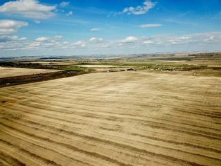 Photo 8: 1/2 Mile N of 434 Ave on 32 ST W: Rural Foothills County Land for sale : MLS®# C4243509
