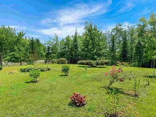 Photo 16: 782 Waterloo Road in Waterloo: 405-Lunenburg County Residential for sale (South Shore)  : MLS®# 202117282