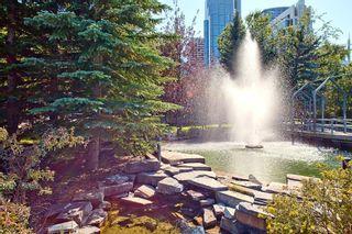 Photo 43: 302C 500 EAU CLAIRE Avenue SW in Calgary: Eau Claire Apartment for sale : MLS®# C4215554