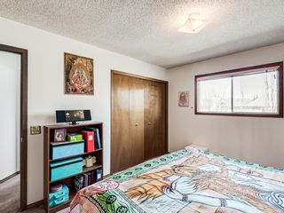 Photo 17: 64 Sanderling Hill in Calgary: Sandstone Valley Detached for sale : MLS®# A1090715