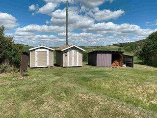Photo 14: 11168 Township Road: Rural Flagstaff County House for sale : MLS®# E4251678