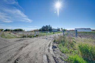 Photo 49: 1821 232 Avenue in Edmonton: Zone 50 House for sale : MLS®# E4251432