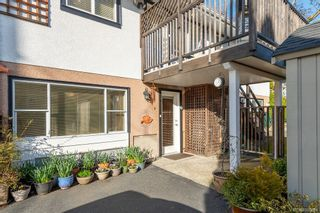Photo 40: 1495 Shorncliffe Rd in : SE Cedar Hill House for sale (Saanich East)  : MLS®# 866884