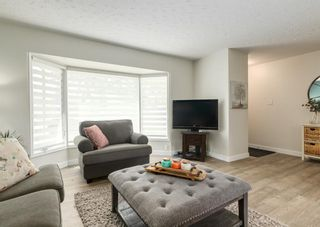 Photo 4: 5812 21 Street SW in Calgary: North Glenmore Park Detached for sale : MLS®# A1128102