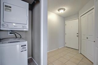 Photo 5: 7402 304 MacKenzie Way SW: Airdrie Apartment for sale : MLS®# A1081028