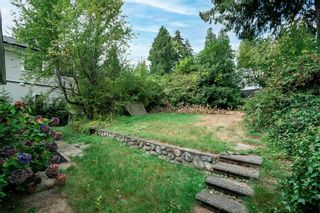 Photo 10: 2773 LAWSON Avenue in West Vancouver: Dundarave House for sale : MLS®# R2620509
