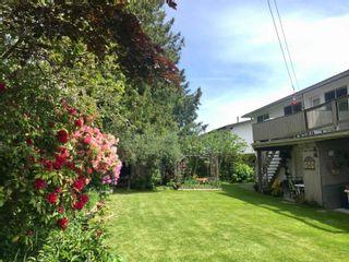 Photo 5: 3131 SPRINGFORD Avenue in Richmond: Steveston North Duplex for sale : MLS®# R2620333