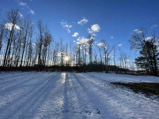 Photo 31: 13 55504 RGE RD 13: Rural Lac Ste. Anne County House for sale : MLS®# E4229579
