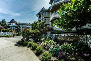 """Photo 1: 306 20120 56 Avenue in Langley: Langley City Condo for sale in """"Blackberry Lane"""" : MLS®# R2084458"""
