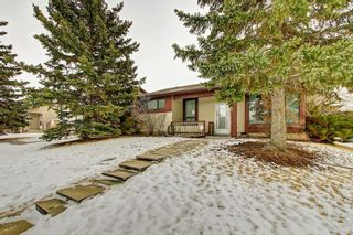 Photo 1: 2141 SUMMERFIELD Boulevard SE: Airdrie Detached for sale : MLS®# A1100597