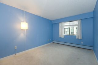 Photo 17: 206 9202 Horne Street in Lougheed Estates: Home for sale : MLS®# V802193