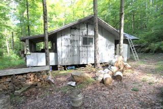 Photo 3: Lt 30 Gelert Road in Minden Hills: House (Bungalow) for sale : MLS®# X4982694