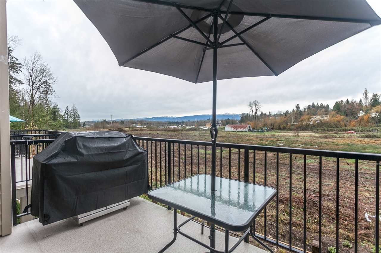 """Photo 18: Photos: 123 10151 240 Street in Maple Ridge: Albion Townhouse for sale in """"ALBION STATION"""" : MLS®# R2124549"""