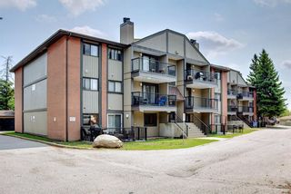 Photo 31: 3312 13045 6 Street SW in Calgary: Canyon Meadows Apartment for sale : MLS®# A1126662