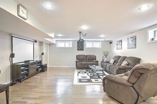 Photo 33: 1077 Country  Hills Circle NW in Calgary: Country Hills Detached for sale : MLS®# A1104987