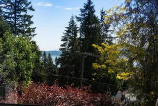 Photo 16: 4702 WILLOW Place in West Vancouver: Caulfeild House for sale : MLS®# R2617420
