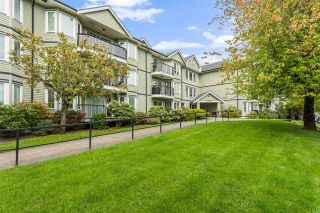 """Photo 1: 208 20881 56 Avenue in Langley: Langley City Condo for sale in """"Robert's Court"""" : MLS®# R2576787"""