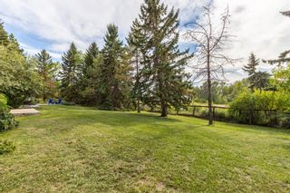 Photo 49: 255123 Woodland Road in Rural Rocky View County: Rural Rocky View MD Detached for sale : MLS®# A1142755