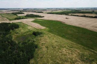 Photo 9: 49279 RR250: Rural Leduc County Rural Land/Vacant Lot for sale : MLS®# E4141338