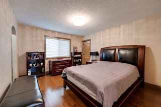 Photo 20: 205 ALBANY Drive in Edmonton: Zone 27 House for sale : MLS®# E4236986