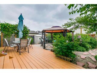 Photo 21: 42 MARTHA'S HAVEN Manor NE in Calgary: Martindale House for sale : MLS®# C4017988