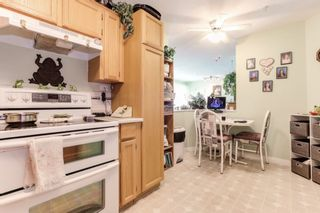 """Photo 11: 303 22275 123 Avenue in Maple Ridge: West Central Condo for sale in """"Mountain View Terrace"""" : MLS®# R2389765"""