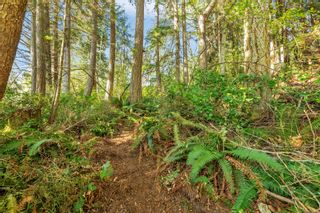 Photo 4: 2550 Seaside Dr in : Sk French Beach Land for sale (Sooke)  : MLS®# 873874