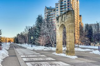 Photo 26: 450 310 8 Street SW in Calgary: Eau Claire Apartment for sale : MLS®# A1060648