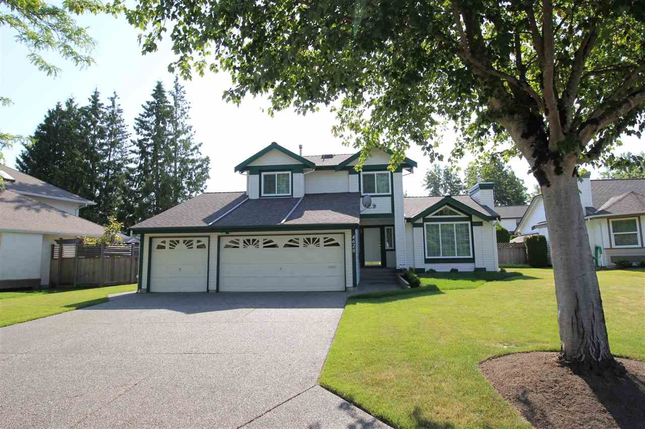 """Main Photo: 4620 220 Street in Langley: Murrayville House for sale in """"Murrayville"""" : MLS®# R2282057"""
