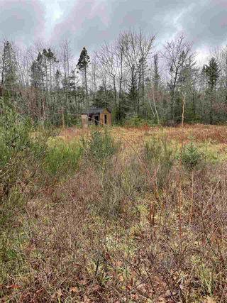 Photo 4: 787 Woodlawn Drive in Jordan Falls: 407-Shelburne County Vacant Land for sale (South Shore)  : MLS®# 202025701