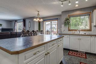Photo 7: 143 Edgeridge Close NW in Calgary: Edgemont Detached for sale : MLS®# A1133048