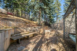 Photo 27: 8131 33 Avenue NW in Calgary: Bowness Detached for sale : MLS®# A1092257