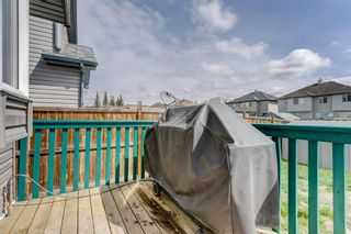 Photo 25: 100 TARINGTON Way NE in Calgary: Taradale Detached for sale : MLS®# C4243849