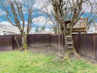 Photo 35: 19418 62 Avenue in Surrey: Cloverdale BC House for sale (Cloverdale)  : MLS®# R2558161