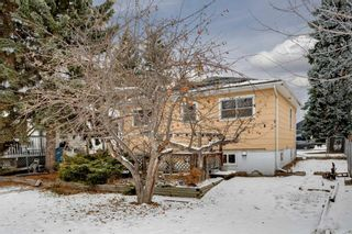Photo 22: 515 20 Avenue NW in Calgary: Mount Pleasant Detached for sale : MLS®# A1050445