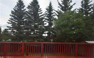 Photo 15: 317 WEBER Way in Edmonton: Zone 20 House for sale : MLS®# E4259256