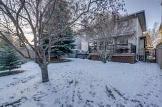 Photo 43: 239 Douglasbank Drive SE in Calgary: Douglasdale/Glen Detached for sale : MLS®# A1050993
