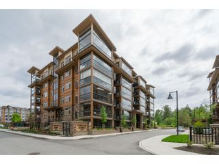 """Photo 2: B226 20716 WILLOUGHBY TOWN CENTRE Drive in Langley: Willoughby Heights Condo for sale in """"YORKSON DOWNS"""" : MLS®# R2455627"""