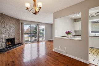 Photo 8: 2419 6 Street NW in Calgary: Mount Pleasant Semi Detached for sale : MLS®# A1101529
