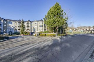 "Photo 14: 213 5677 208TH Street in Langley: Langley City Condo for sale in ""IVYLEA"" : MLS®# R2339815"