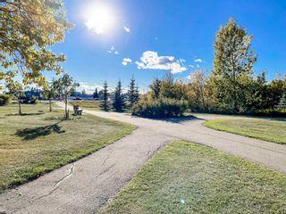 Photo 31: 8755 64 Avenue in Edmonton: Zone 17 House for sale : MLS®# E4263854